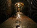 Deep in the Laurent-Perrier Cellars at Tours-Sur-Marne