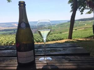 Carte Blanche overlooking Vineyards
