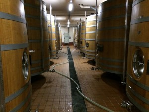 Oak barrels in Louis Roederer Caves