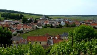 Aerial-view-Krug-Clos-du-Mesnil