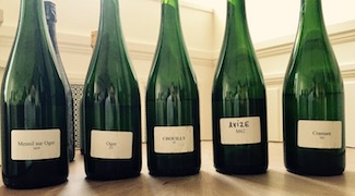 Taittinger: One Big Champagne Family