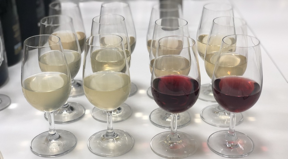 Palmer & Co: 2017 Vins Clairs and Vintage 1995 Collection from Magnum