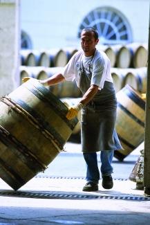 Barrel Cooper