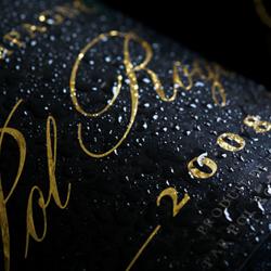 Pol Roger Brut Vintage 2008